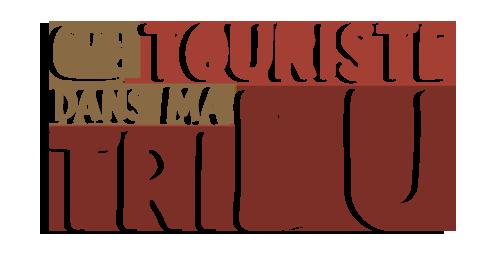 UN TOURISTE DANS MA TRIBU